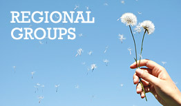 Methodists for World Mission Regional Groups